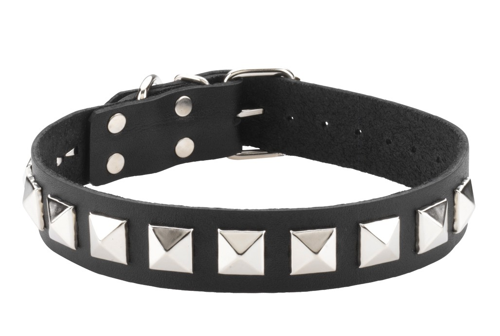 Collar - Single Strap - Studded
